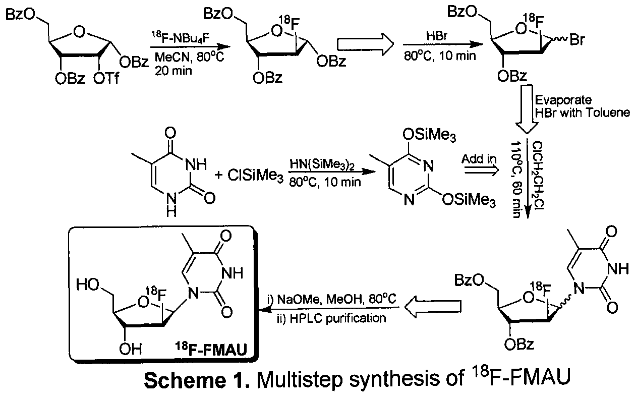 an efficient radiosynthesis of 18f fluoromisonidazole We report an automated synthesis of [18f]-fmiso utilizing a prototype microfluidic radiochemistry module the instrument allows for production of the tracer with 58% ± 2% (11 runs) decay corrected yield.