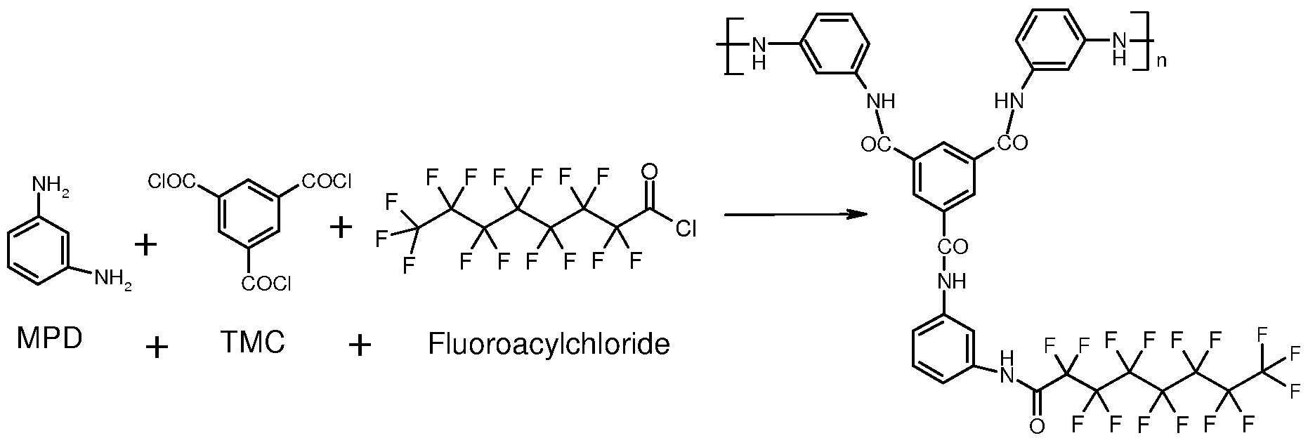 potent fluorinated corticosteroids