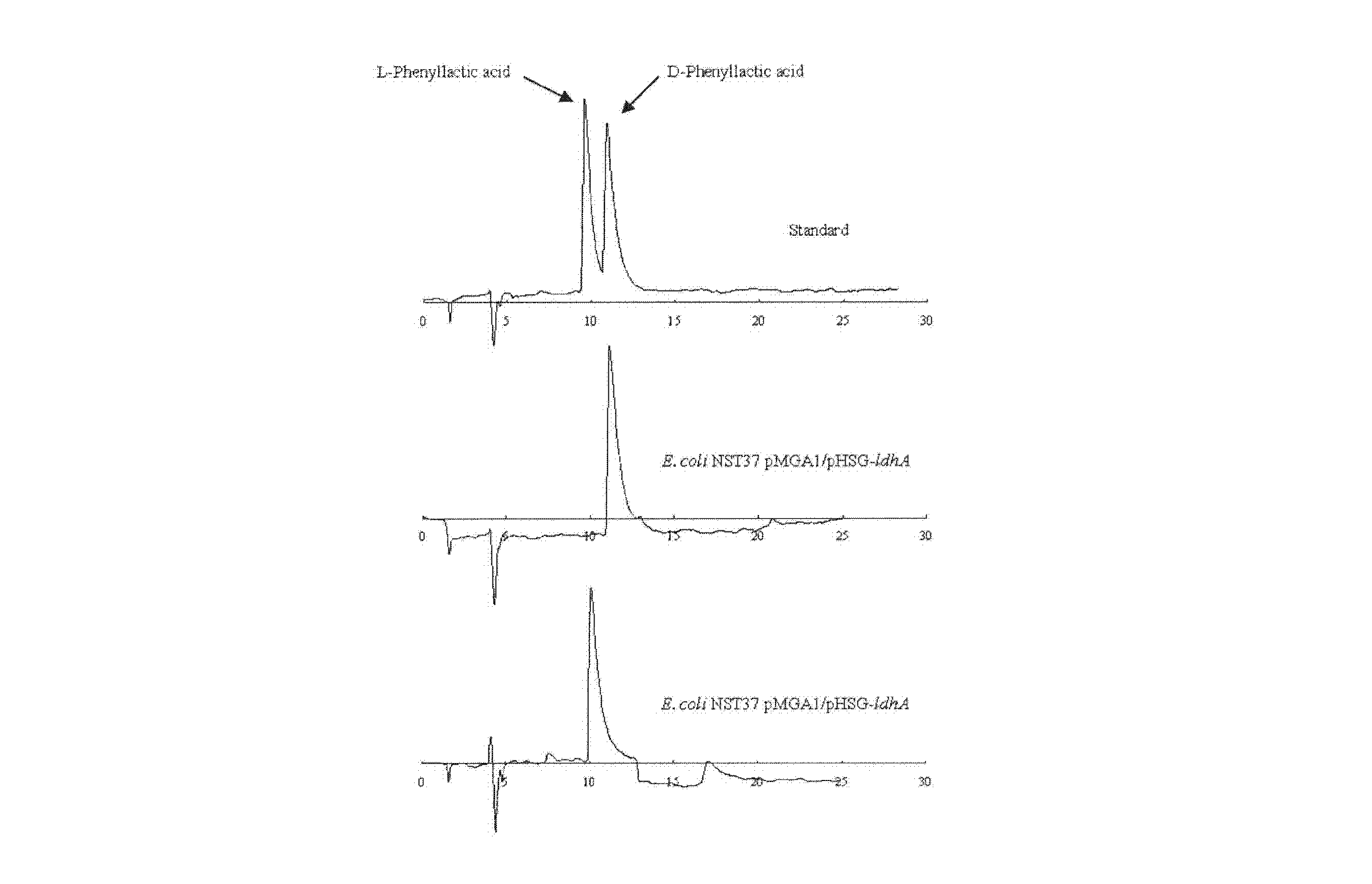 Patents                                                                                                                         Generate link with comments                           Phenylpyruvate reductase and method for manufacturing optically-active phenyllactic acid and 4-hydroxyl-phenyllactic acid using same enzyme