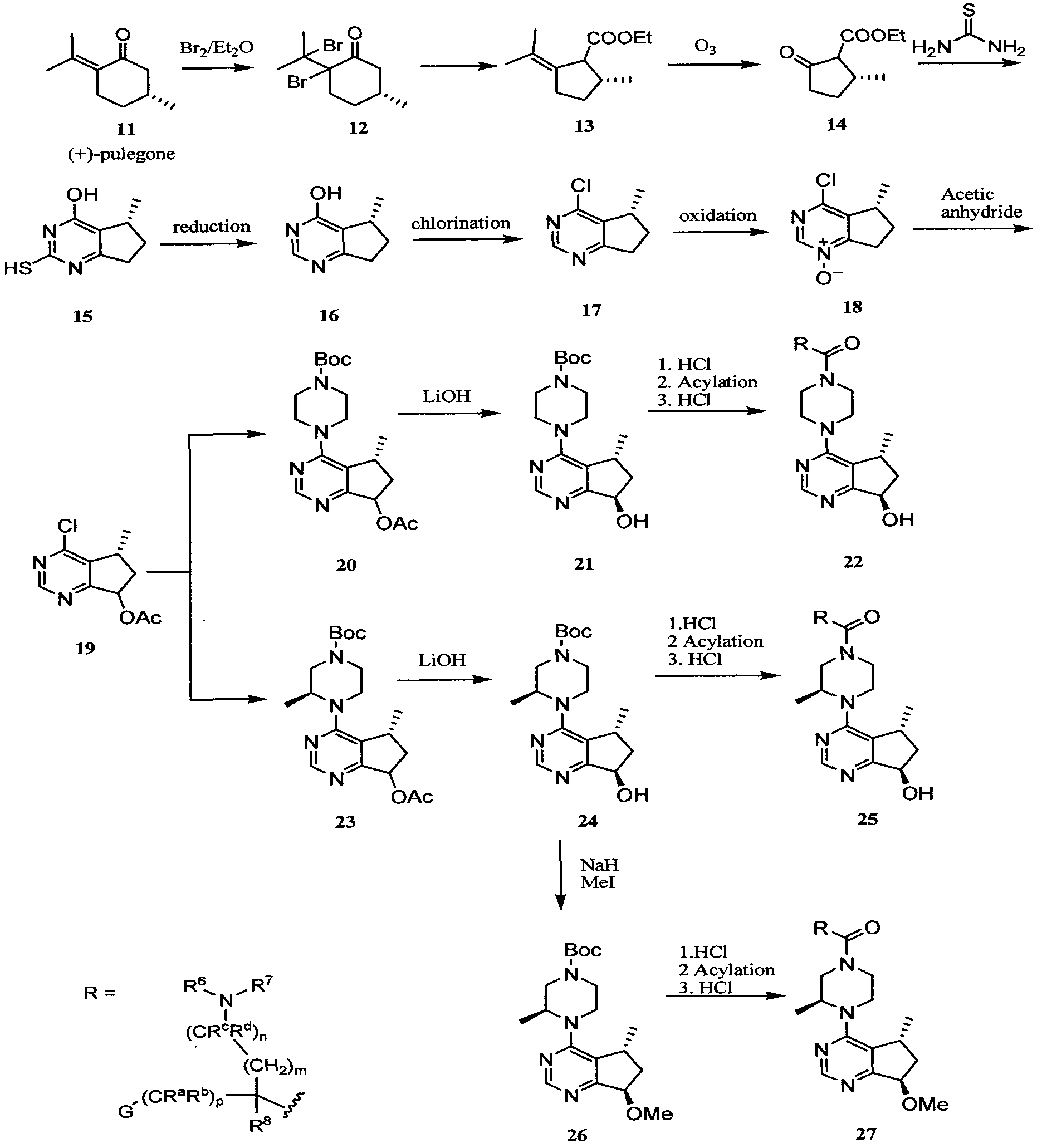 Cyclophosphamide Package Insert Baxter