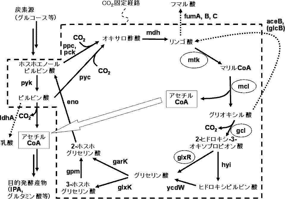 Patent WO2013018734A1 - 二酸化...
