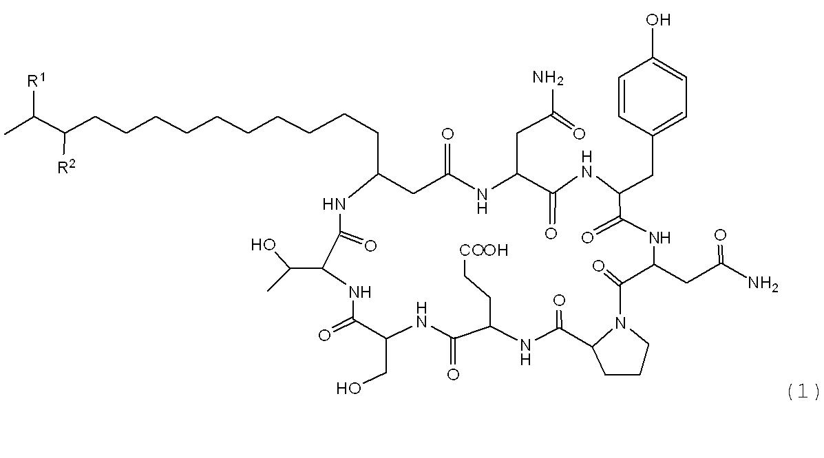 メチル基 - Methyl group