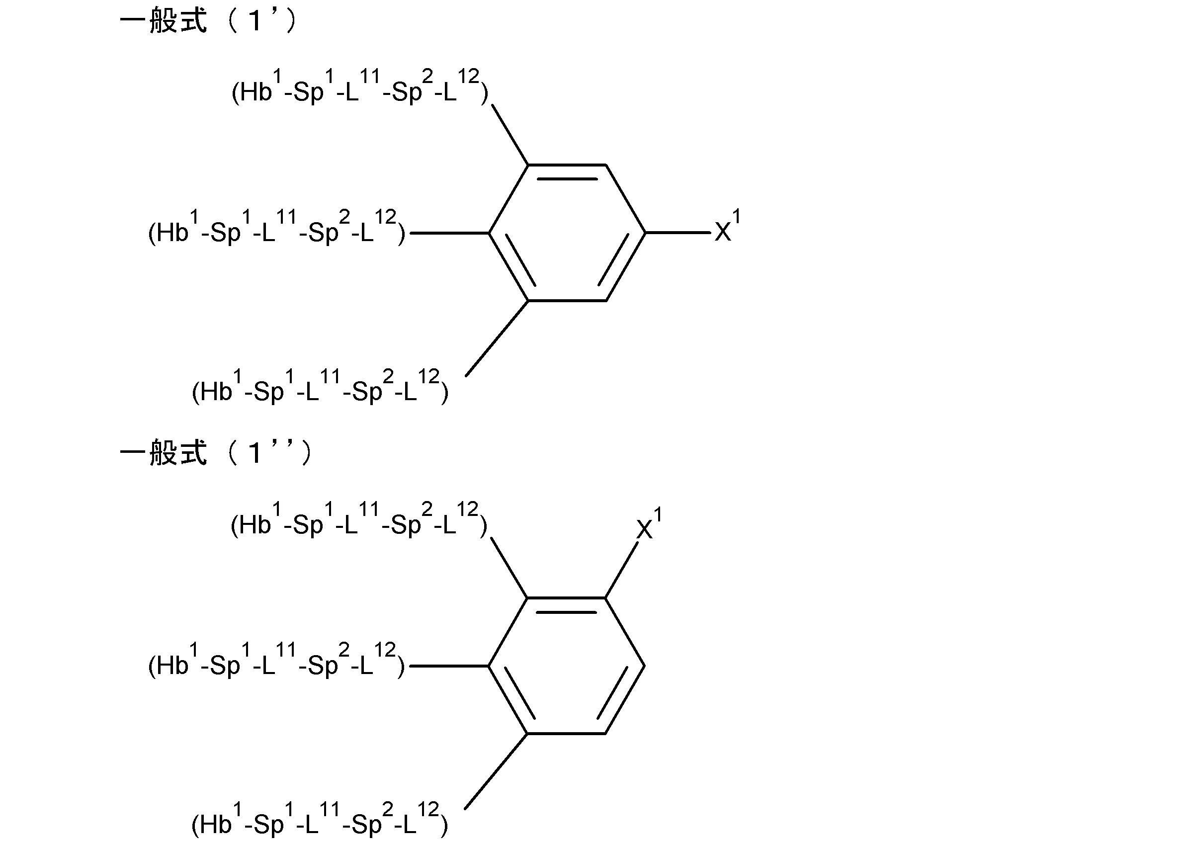 高分子液晶结构图