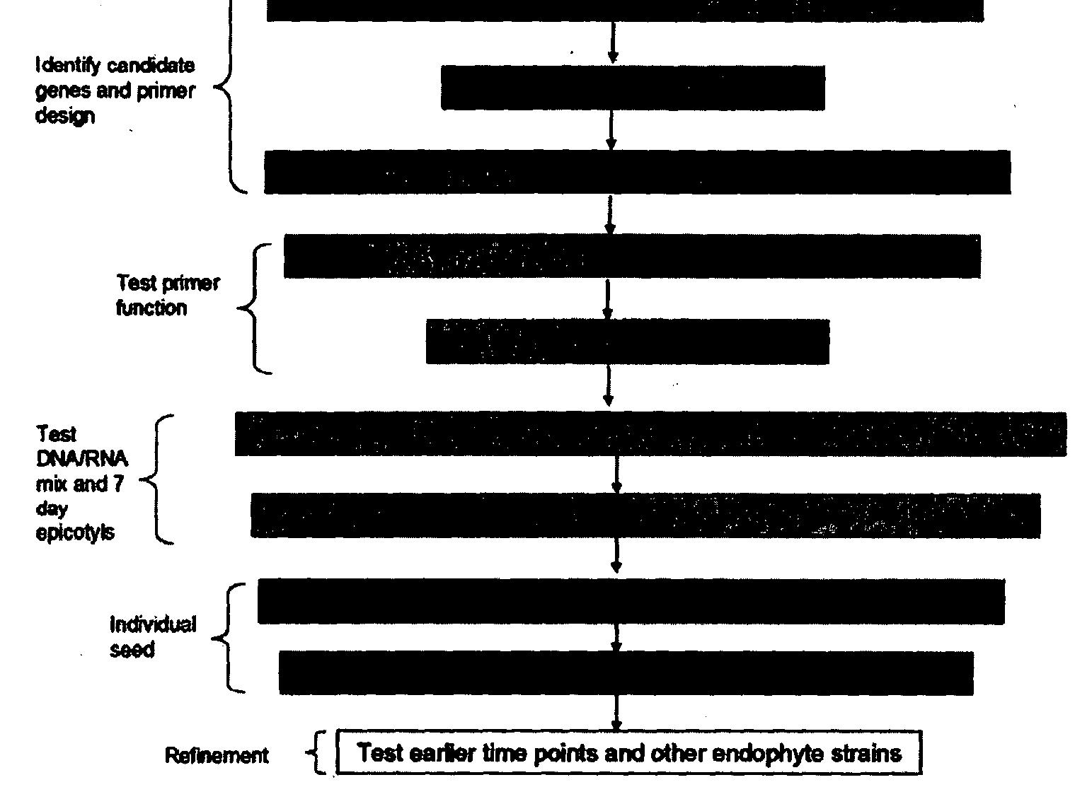 losartan-hydrochlorothiazide (hyzaar)