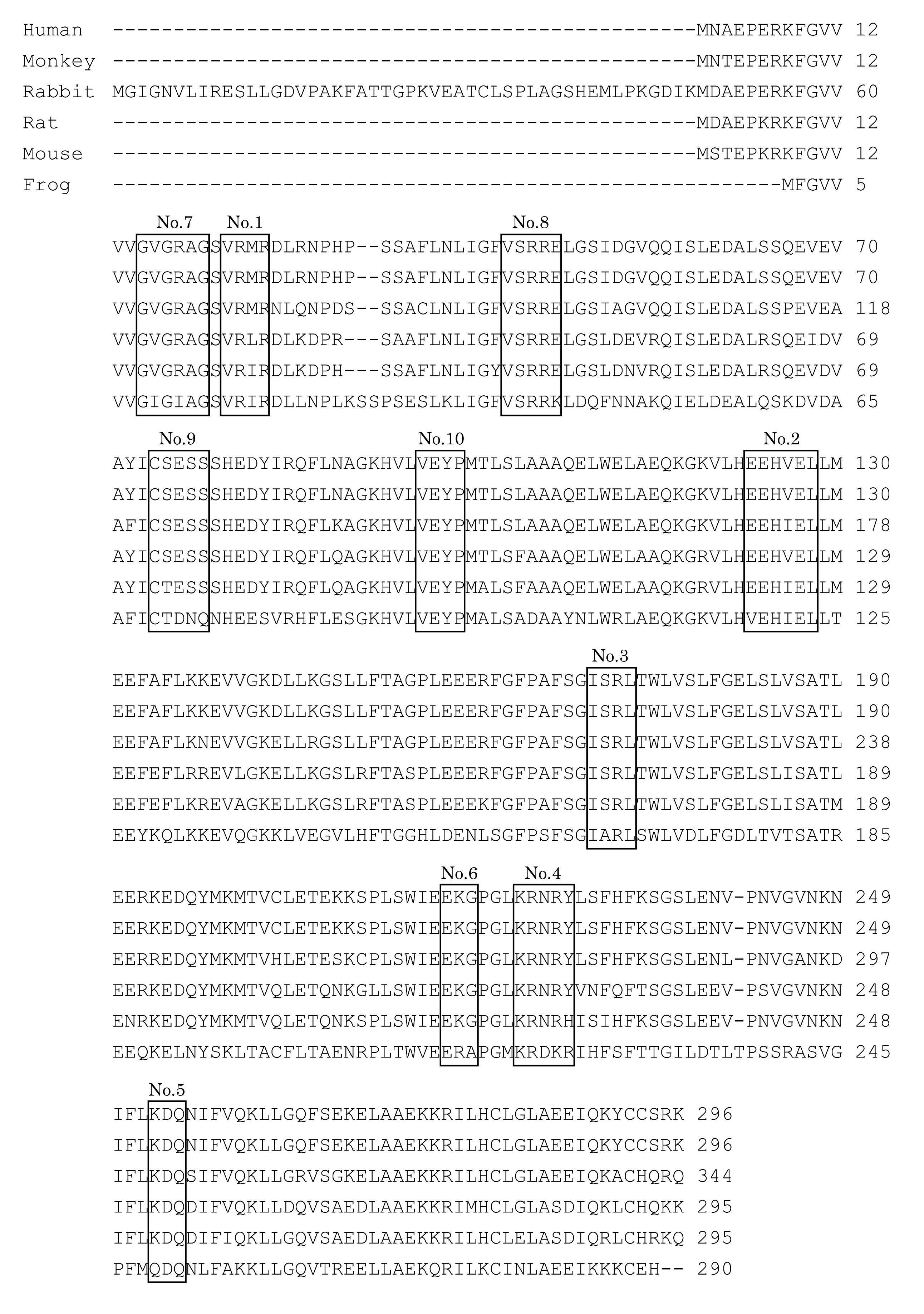 Patent WO2014020933A1 - 新規蛍...