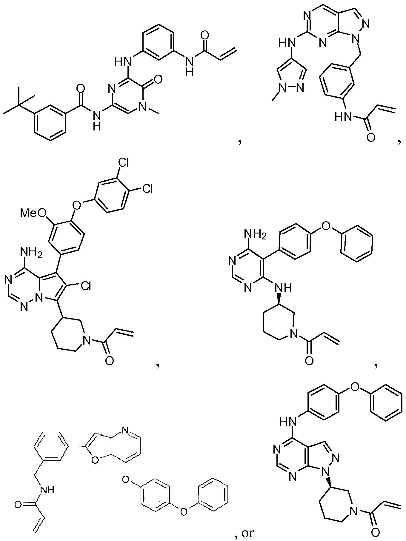 Ciprofloxacin 750 mg indications of pregnancy