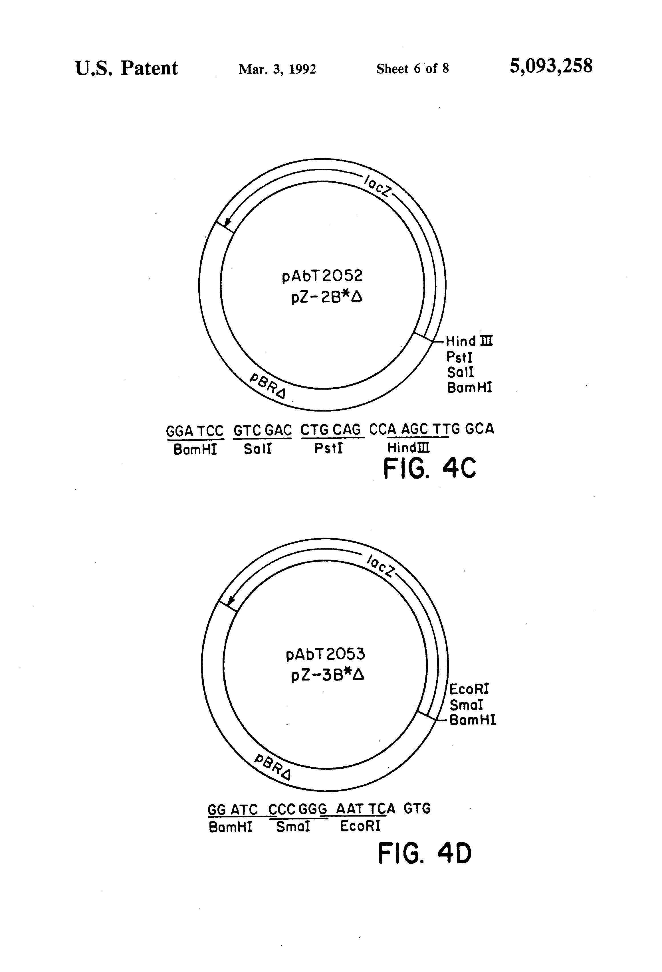 Patent US5093258 - Recombinant fowlpox virus and recombination ...