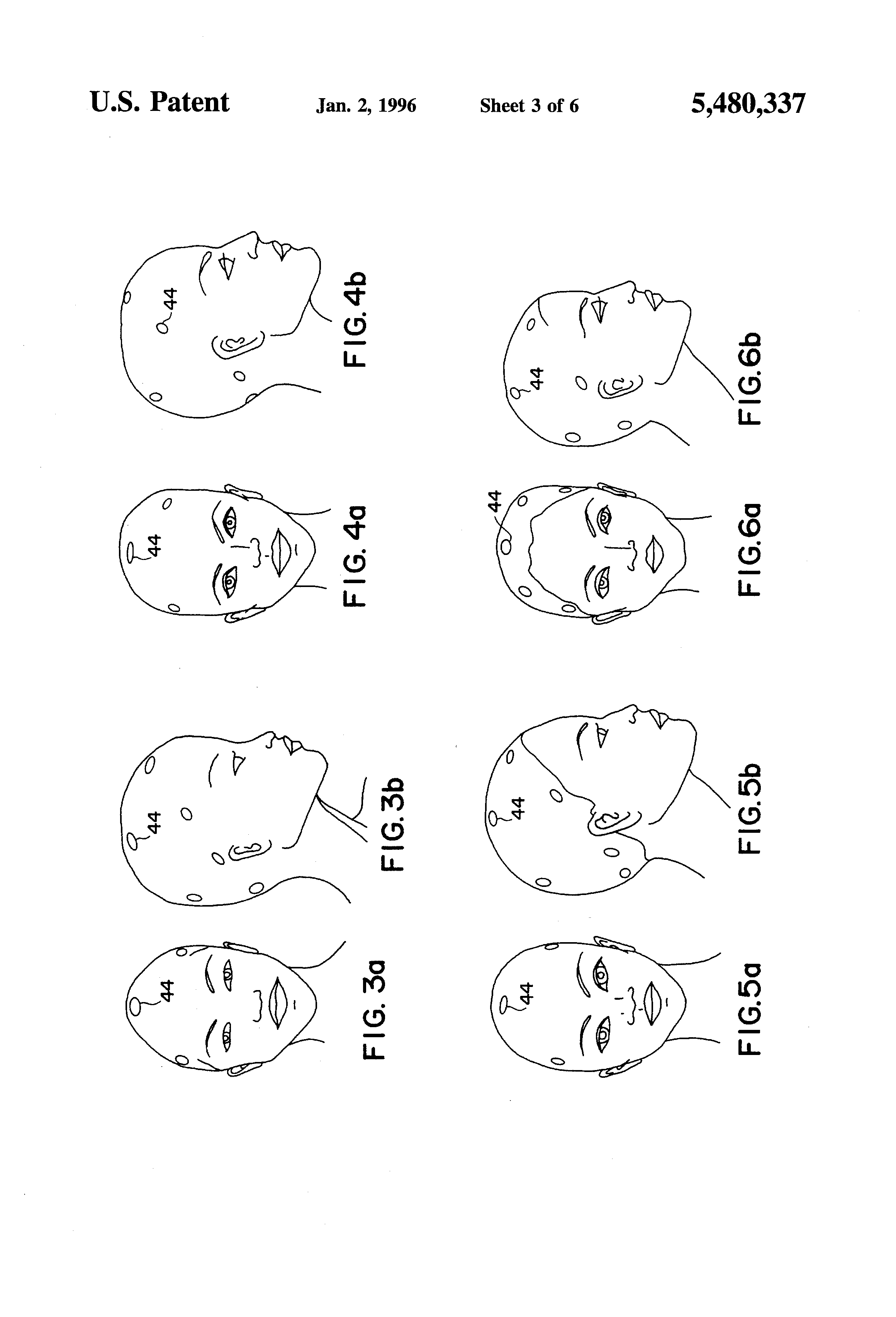 hairstylist head sheet patent us5480337 combination