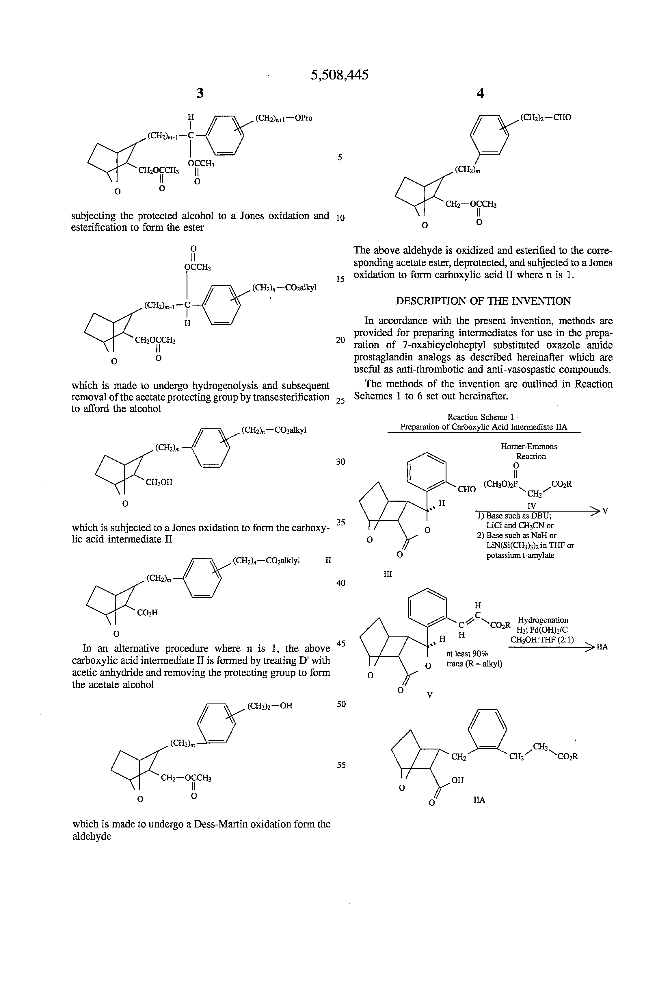 Patent US5508445 - 7-oxabicycloheptane carboxylic acid ...