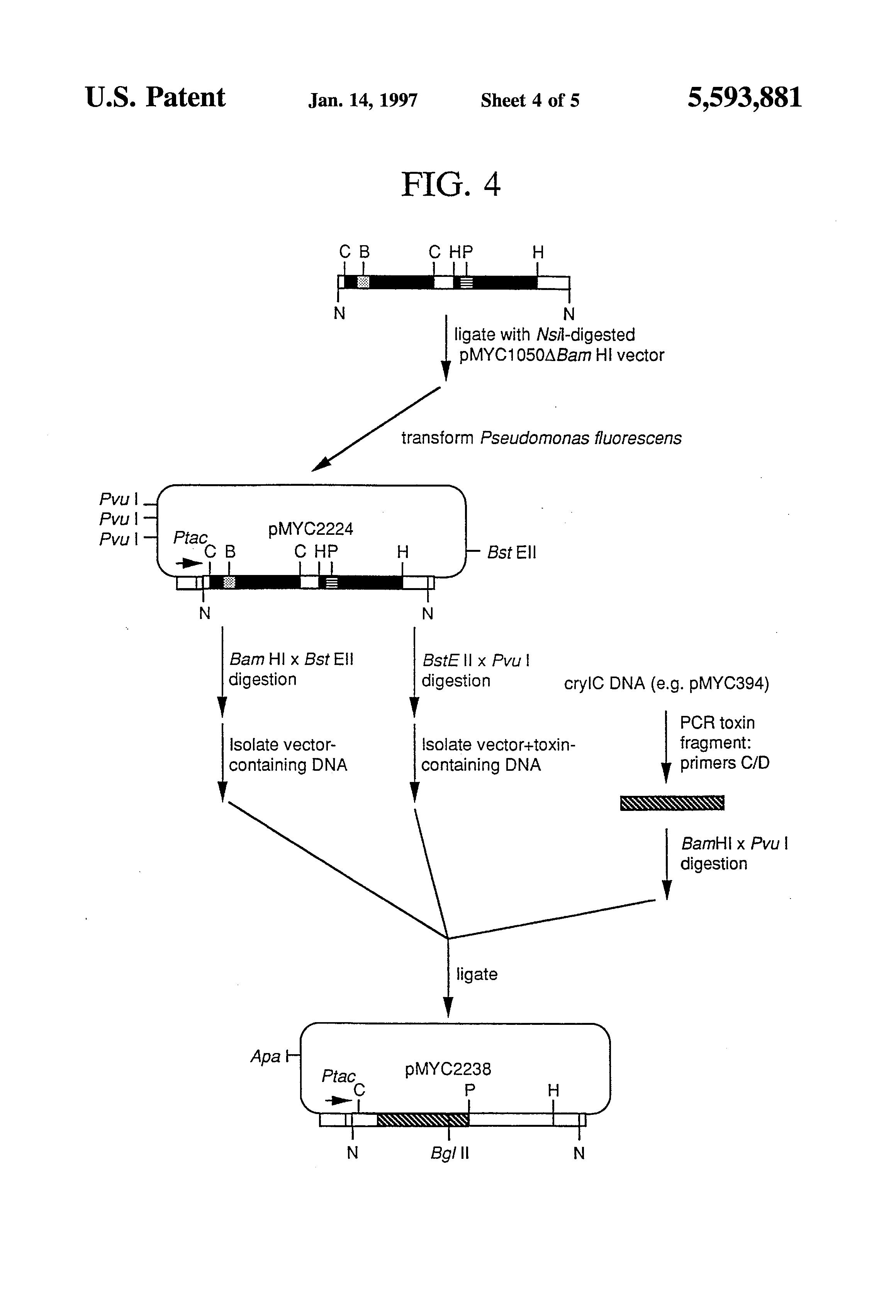 vivo x5 pro主板电路图