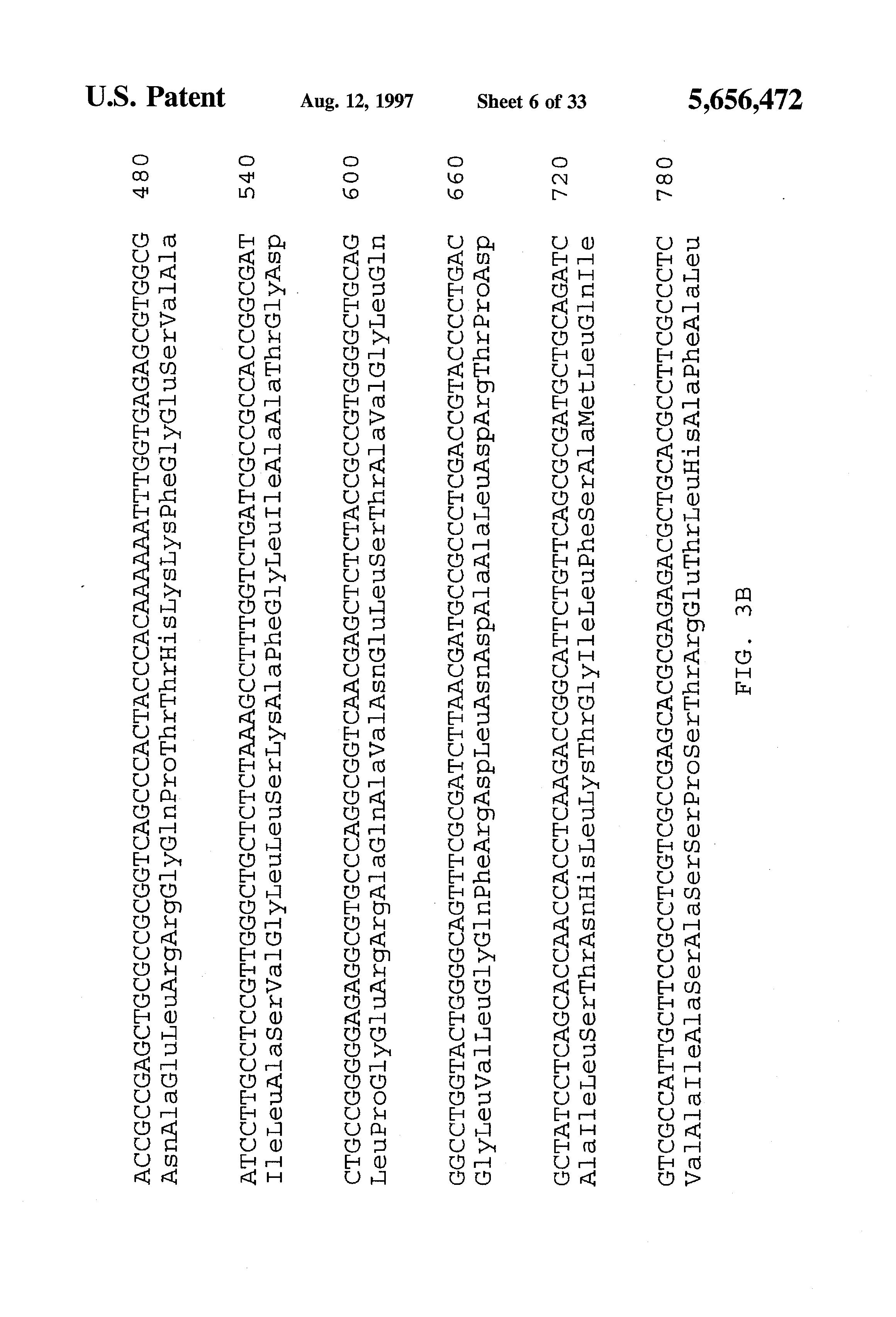 Patent us5656472 beta carotene biosynthesis in genetically patent drawing hexwebz Gallery