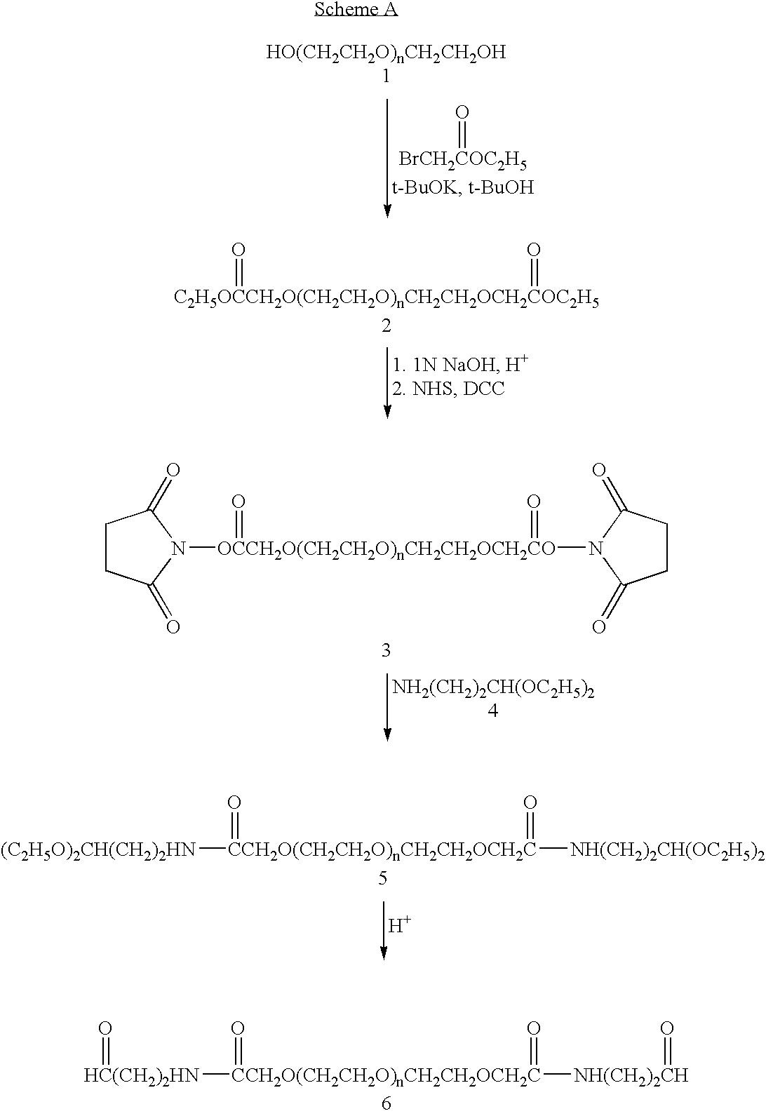 Figure US07217845-20070515-C00058