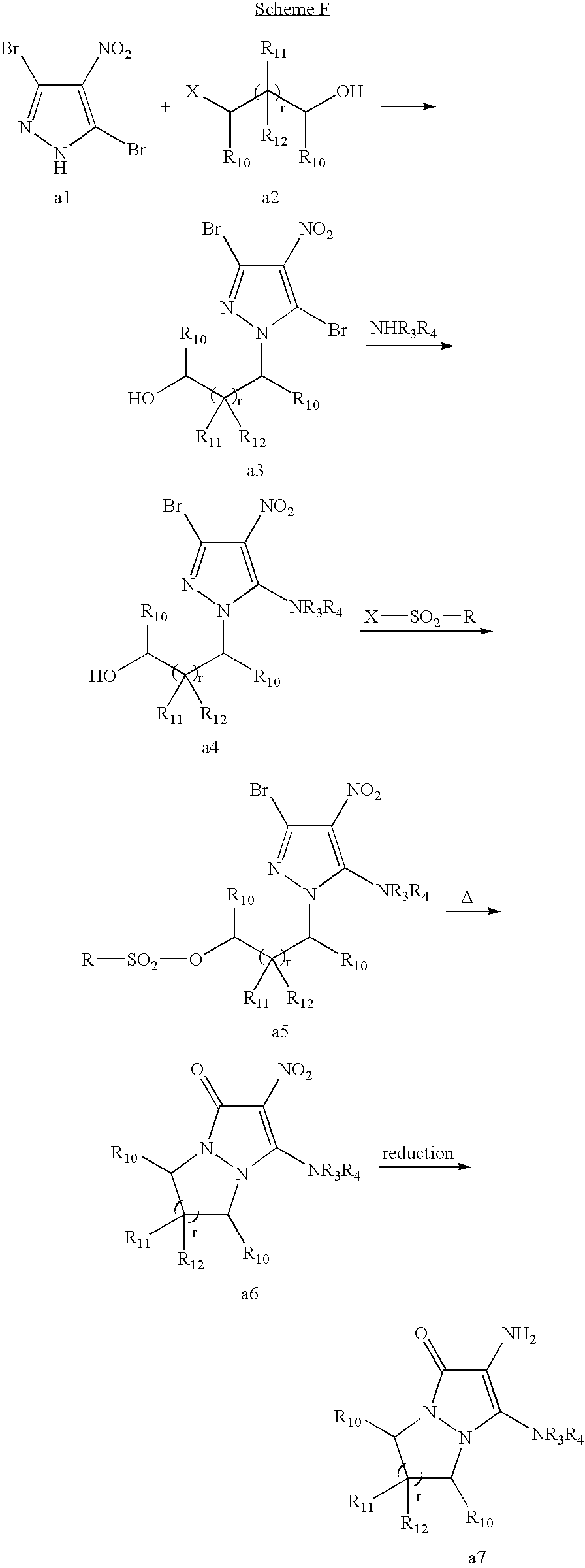 Figure US07488356-20090210-C00037