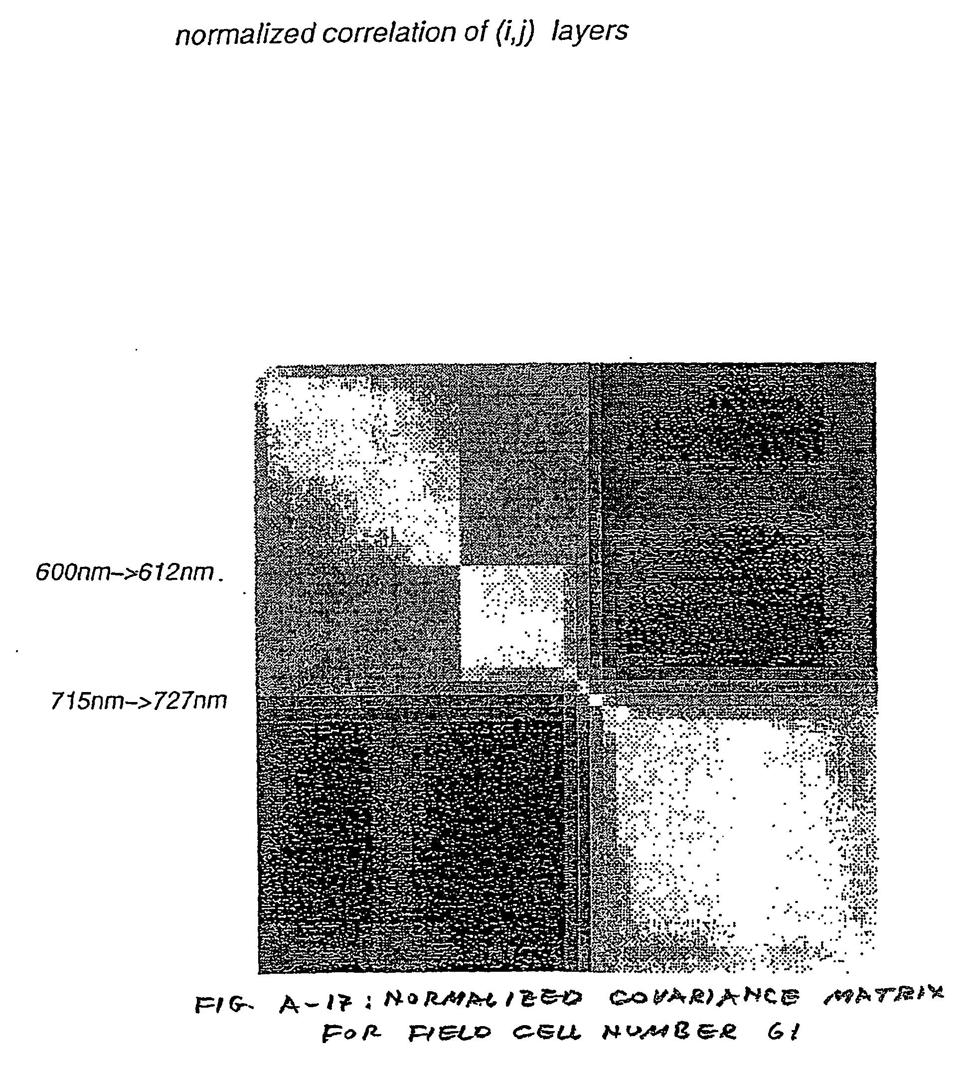 Figure US20070080851A1-20070412-P00015