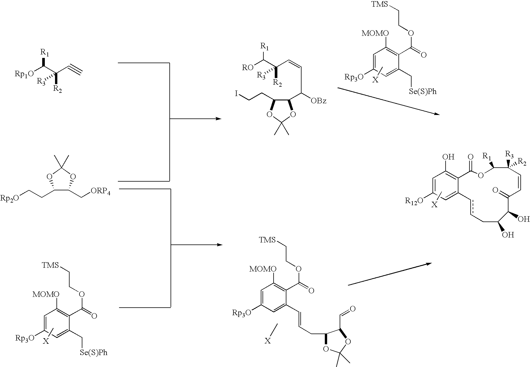 Us20040224936a1 Macrocyclic Compounds Useful As Pharmaceuticals Diagram Wiring Rz 088 Figure 20041111 C00022