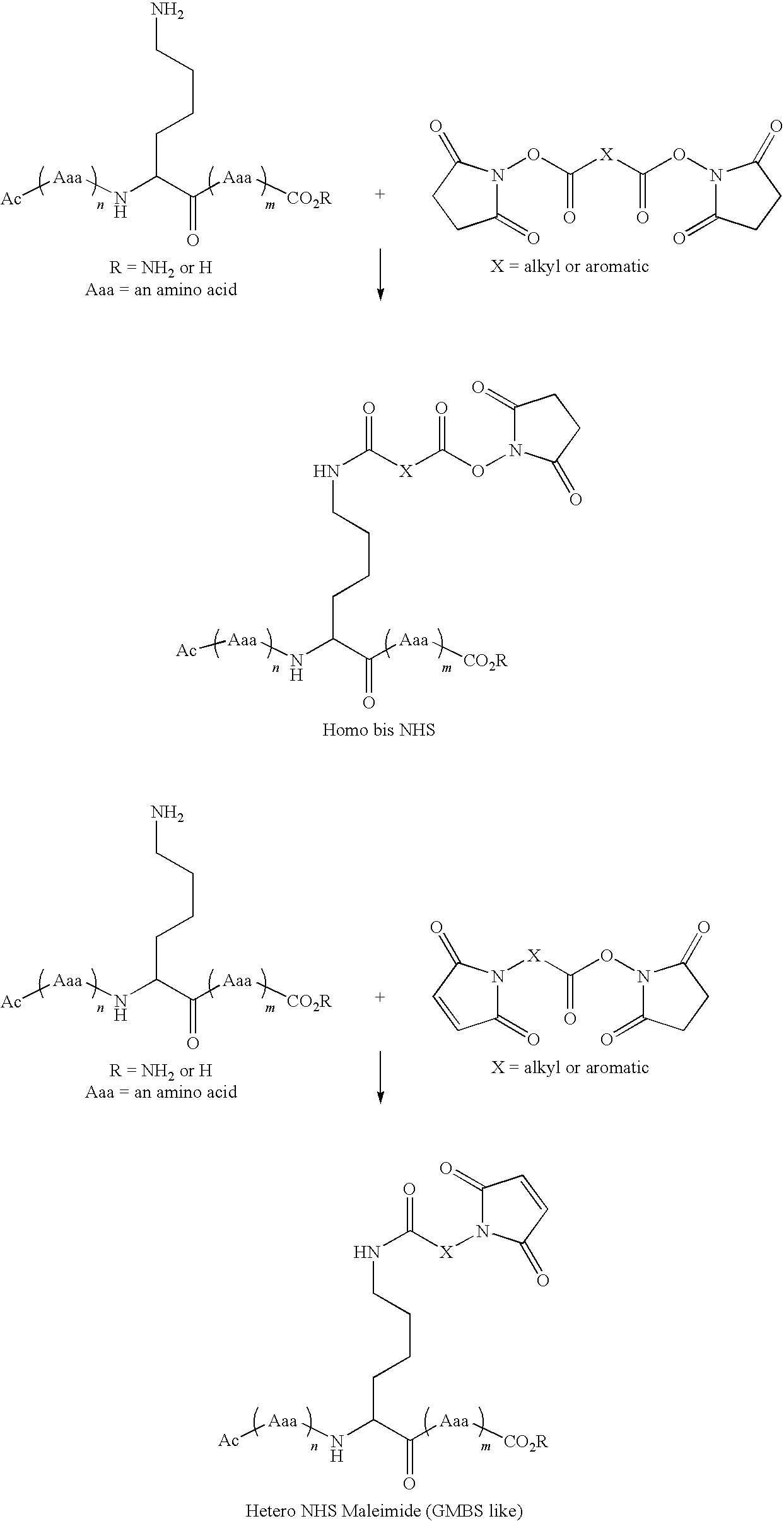 Figure US20090175821A1-20090709-C00005