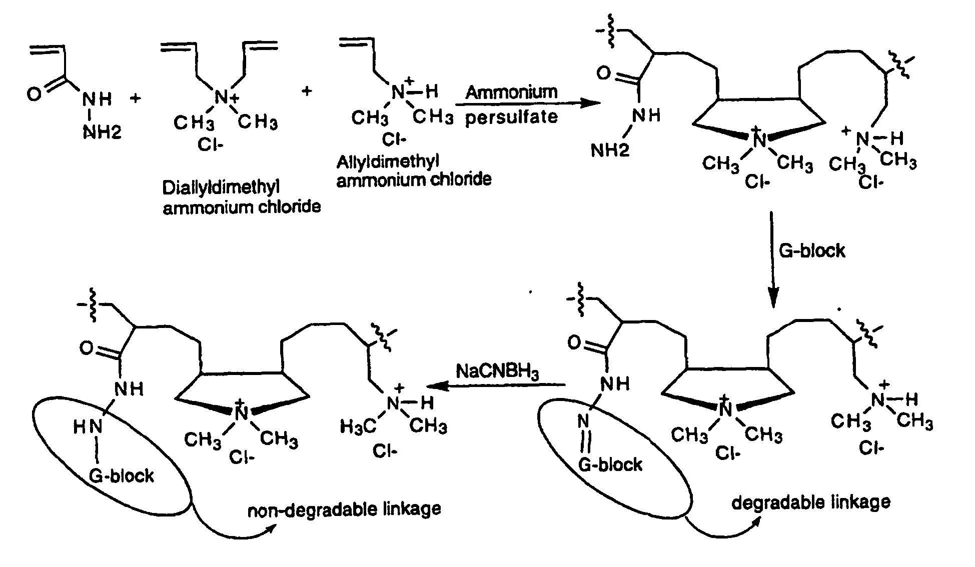 EP0927196B1 - Polymers containing polysaccharides such as alginates