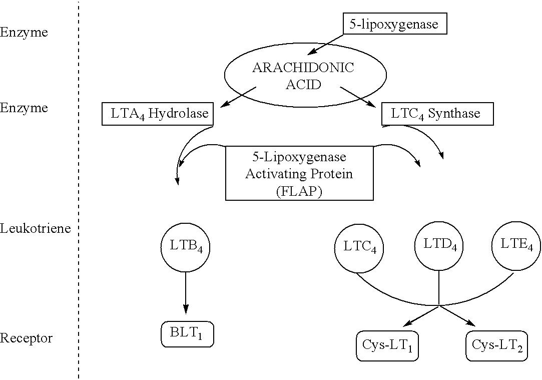 Figure US20030186974A1-20031002-C00055