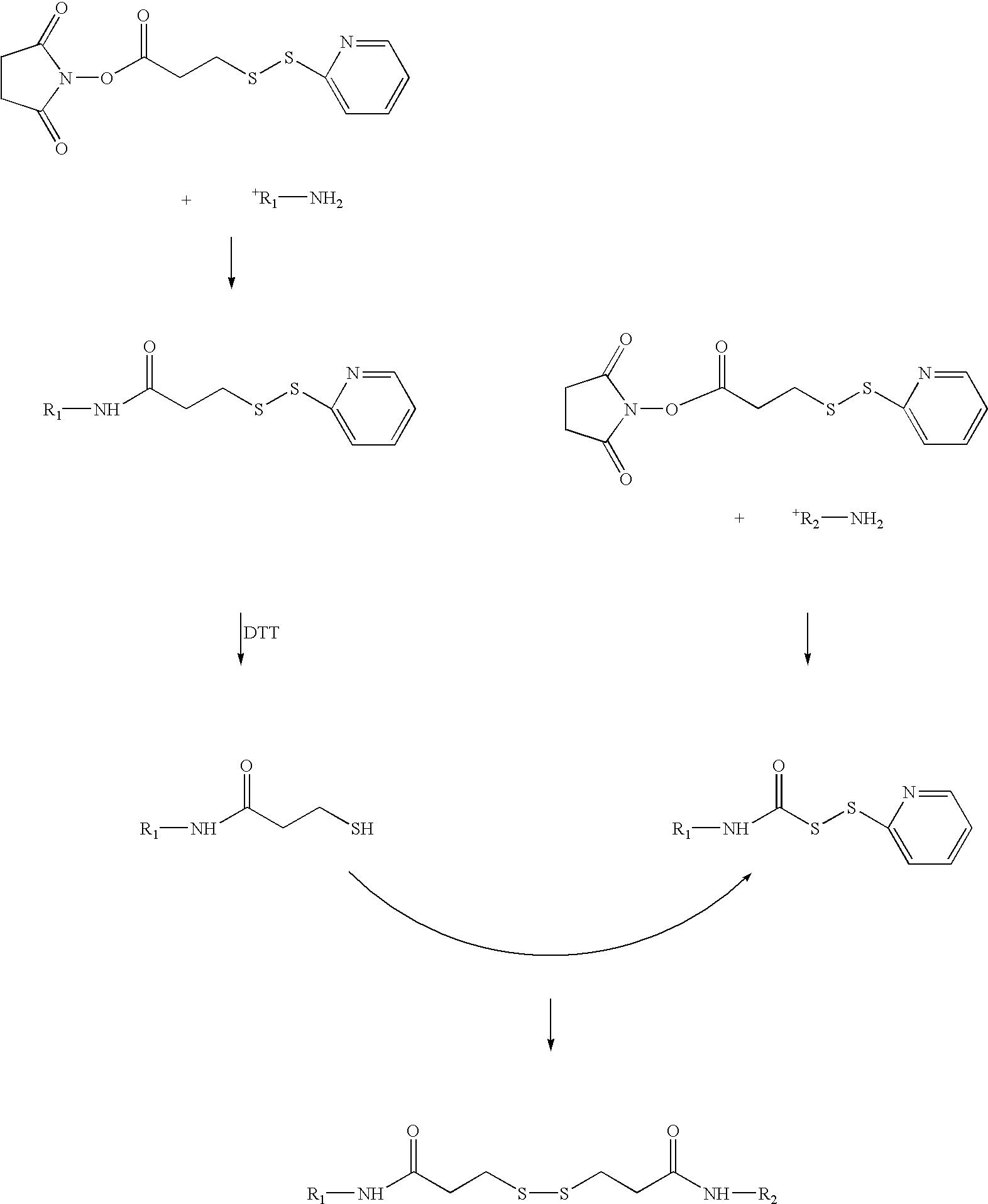 Figure US20060258569A1-20061116-C00010