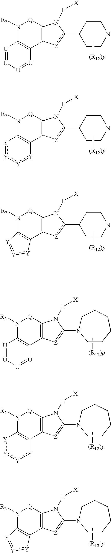 Figure US07169926-20070130-C00023
