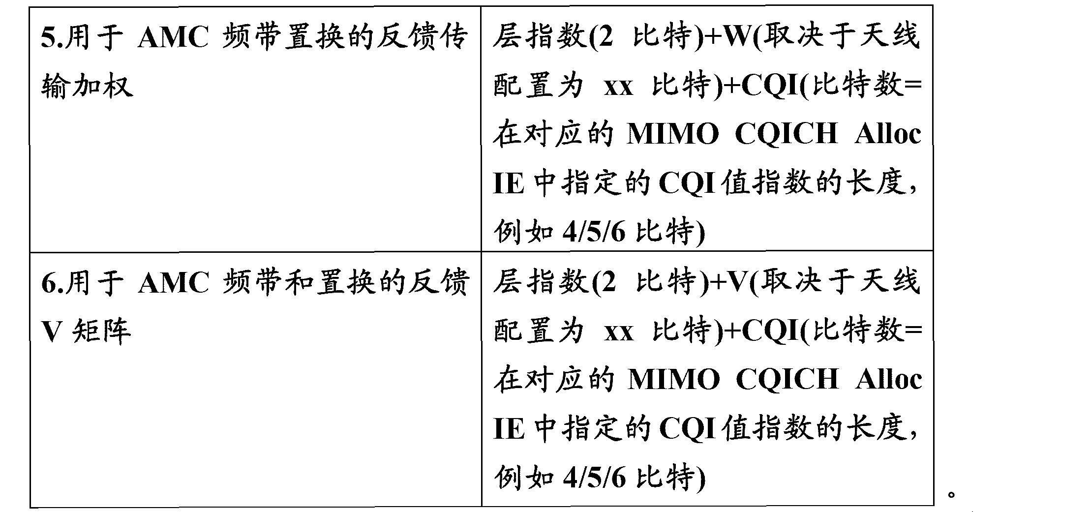 Figure CN101156322BC00061