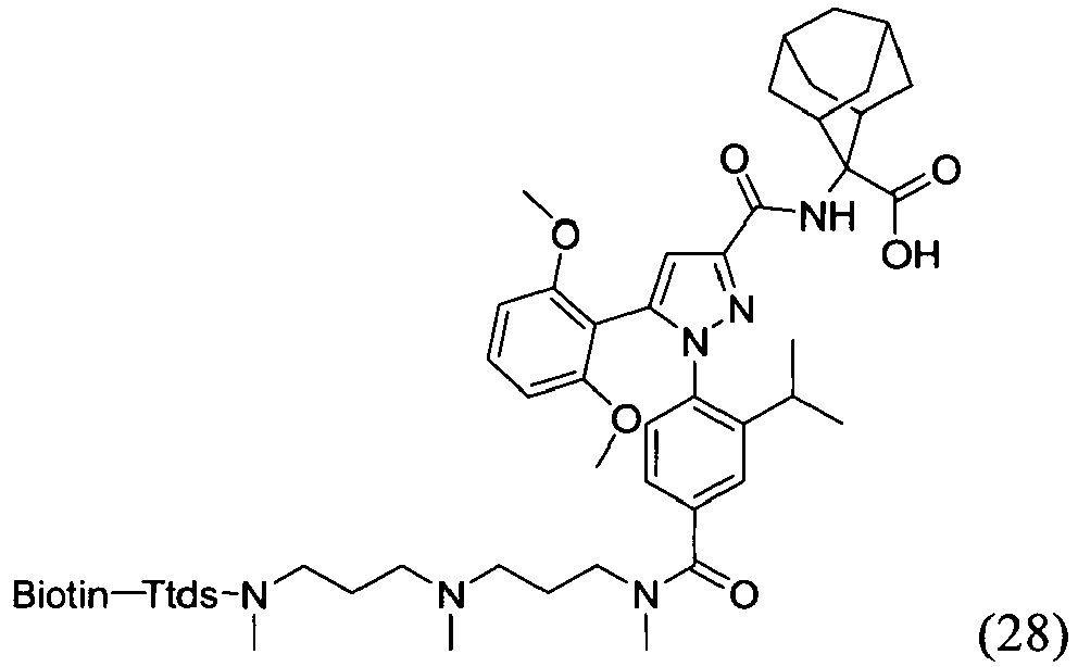 Ep2954934a1
