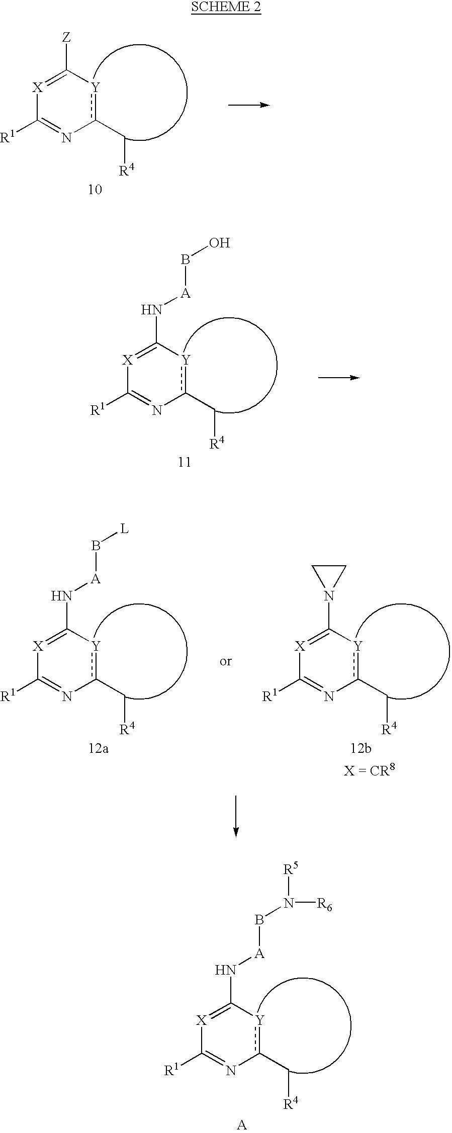 Figure US06506762-20030114-C00020