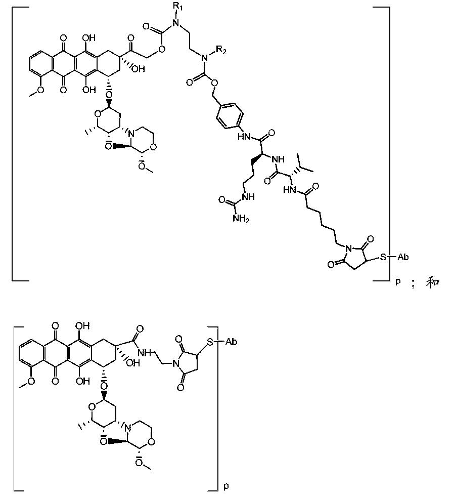 Figure CN104411721AC00091