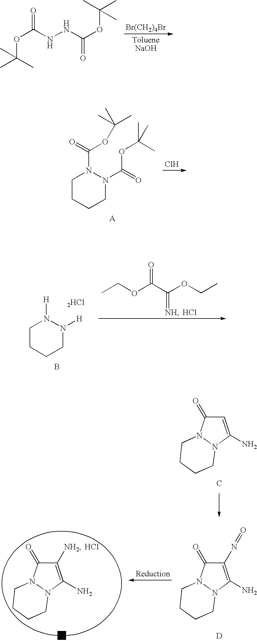 Figure US07488356-20090210-C00050