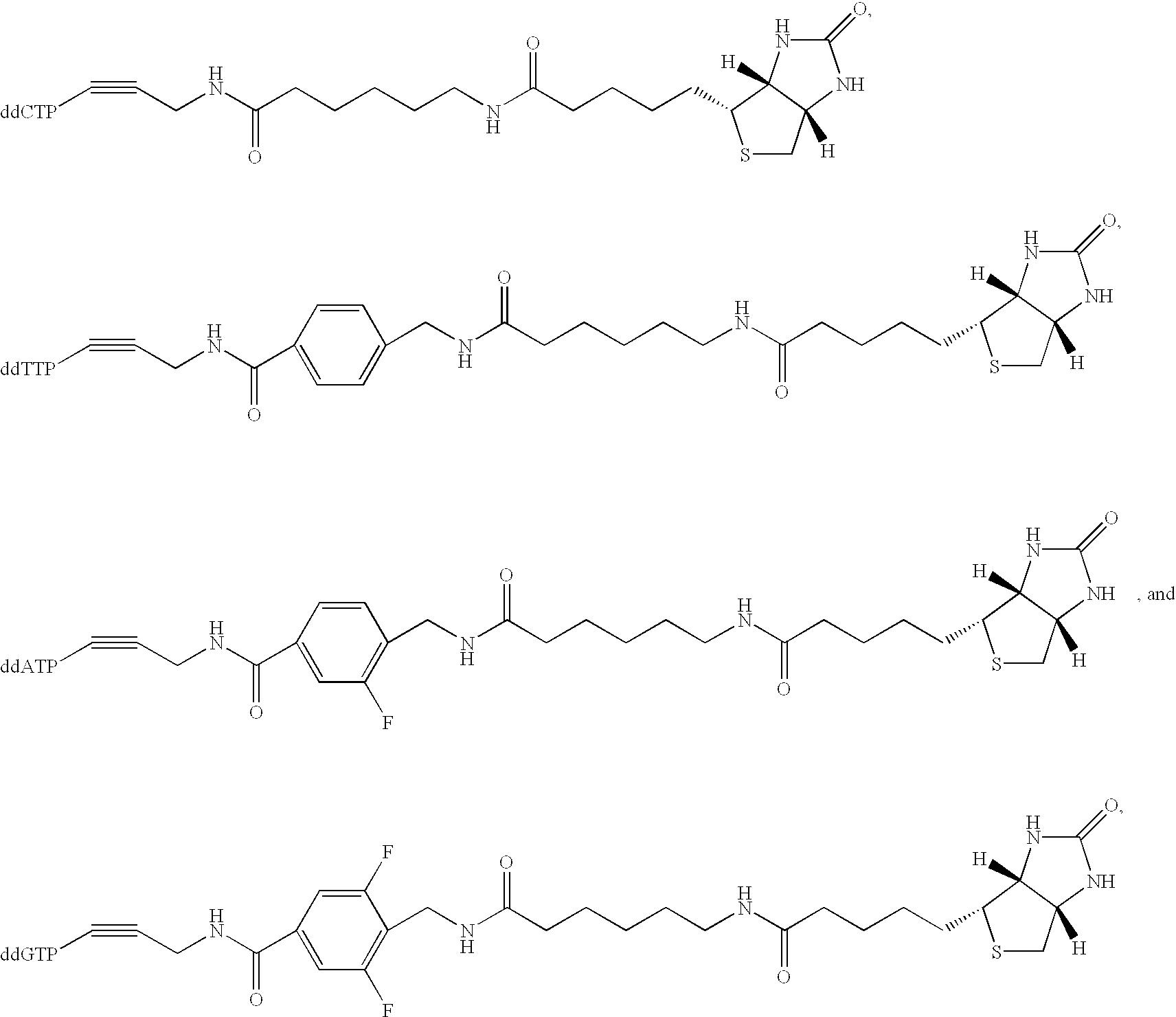 Figure US20030027140A1-20030206-C00003