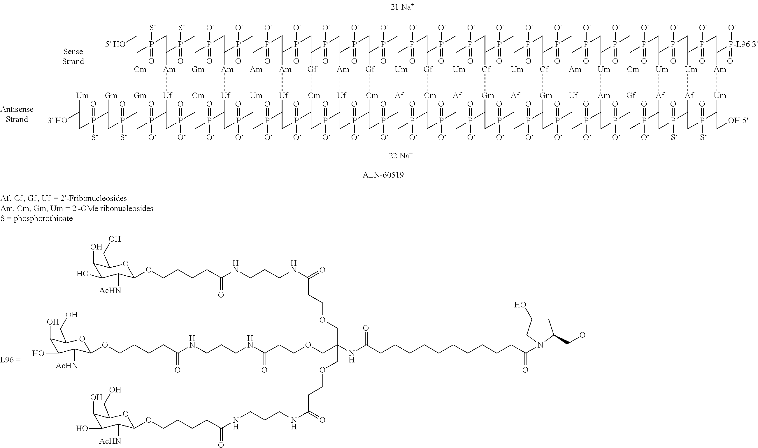 US20160244766A1 - Compositions and methods for inhibiting expression