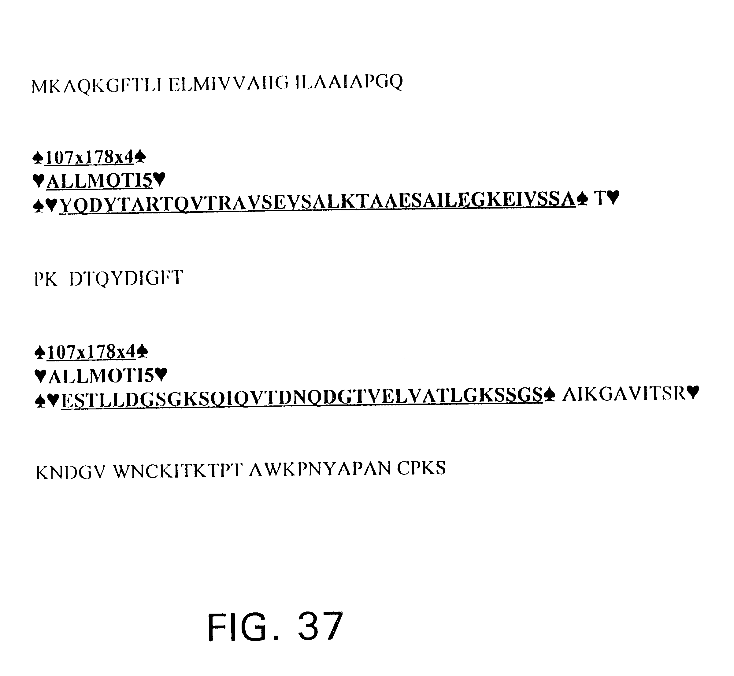 Us6228983b1 Human Respiratory Syncytial Virus Peptides With 1991 Volkswagen Fox 18 Fuse Box Diagram Antifusogenic And Antiviral Activities Google Patents