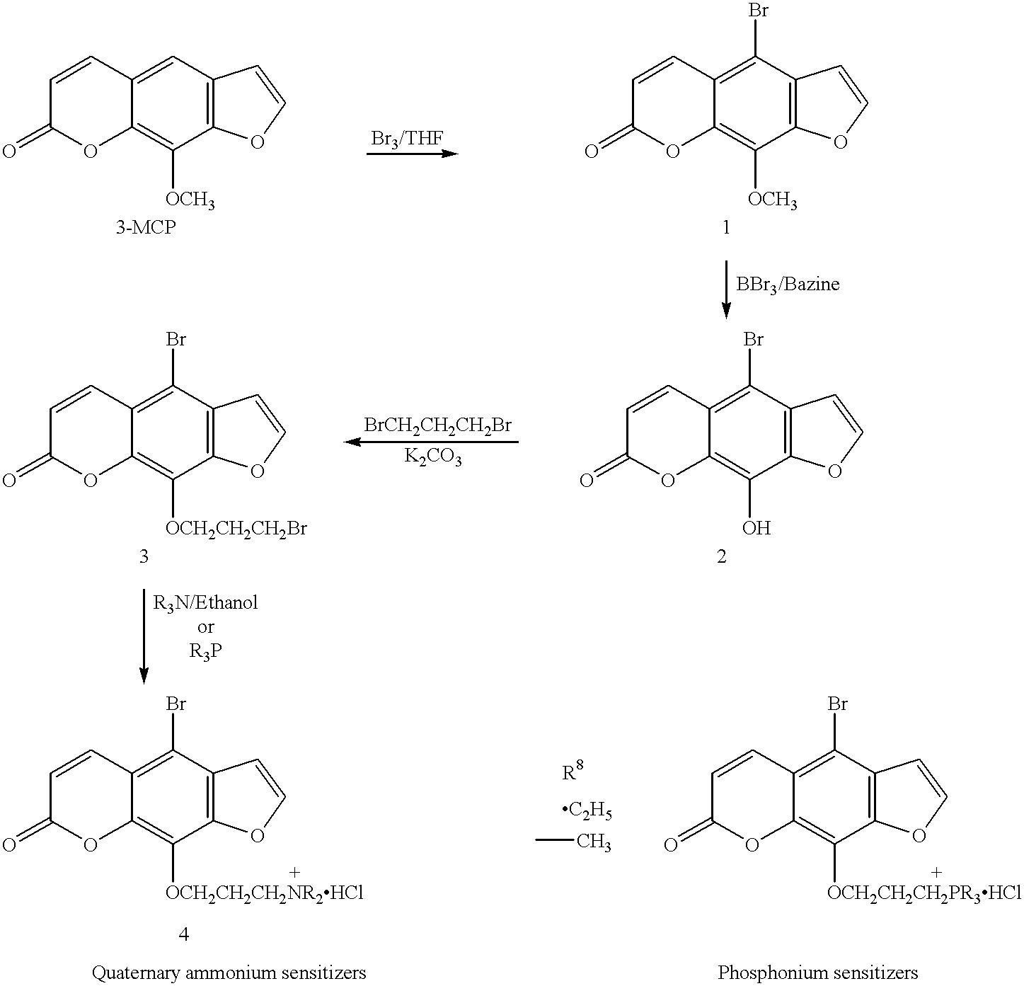 Figure US06235508-20010522-C00008