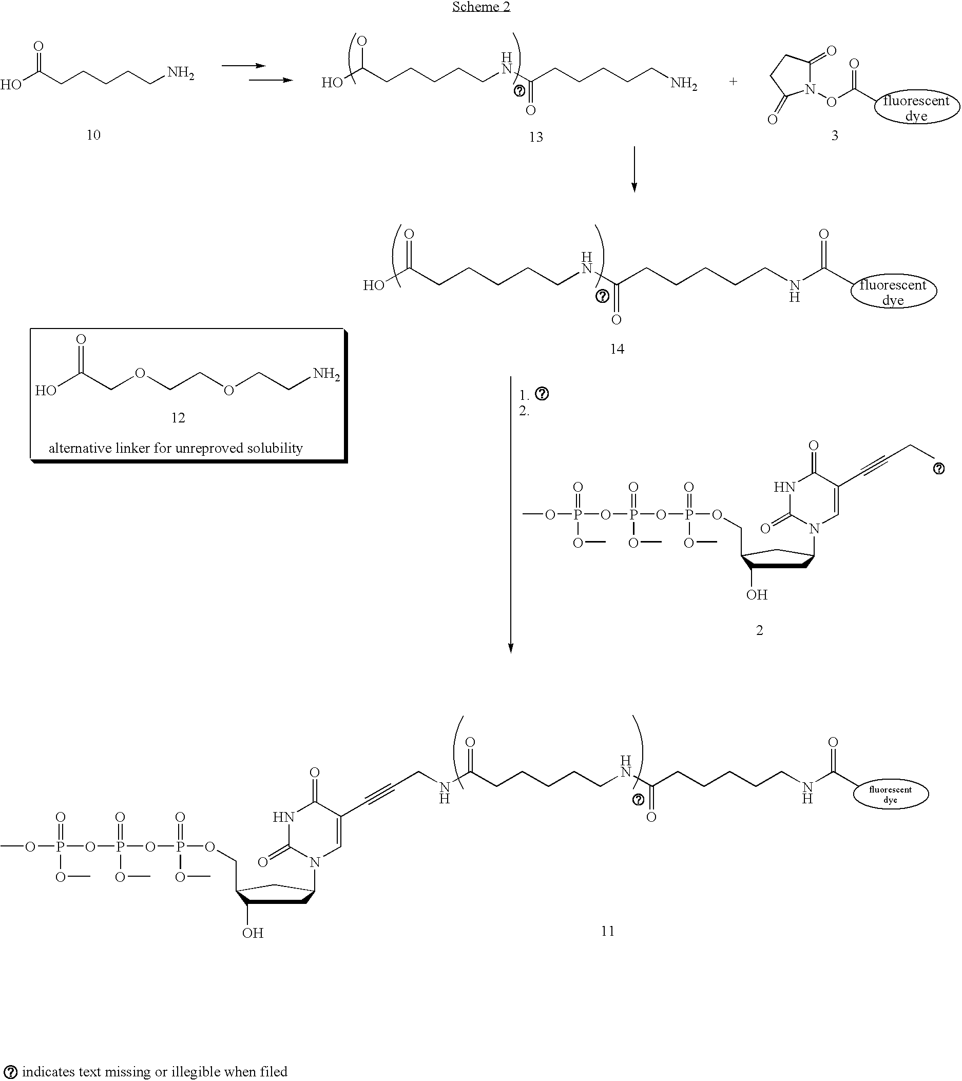 Figure US20050170367A1-20050804-C00005