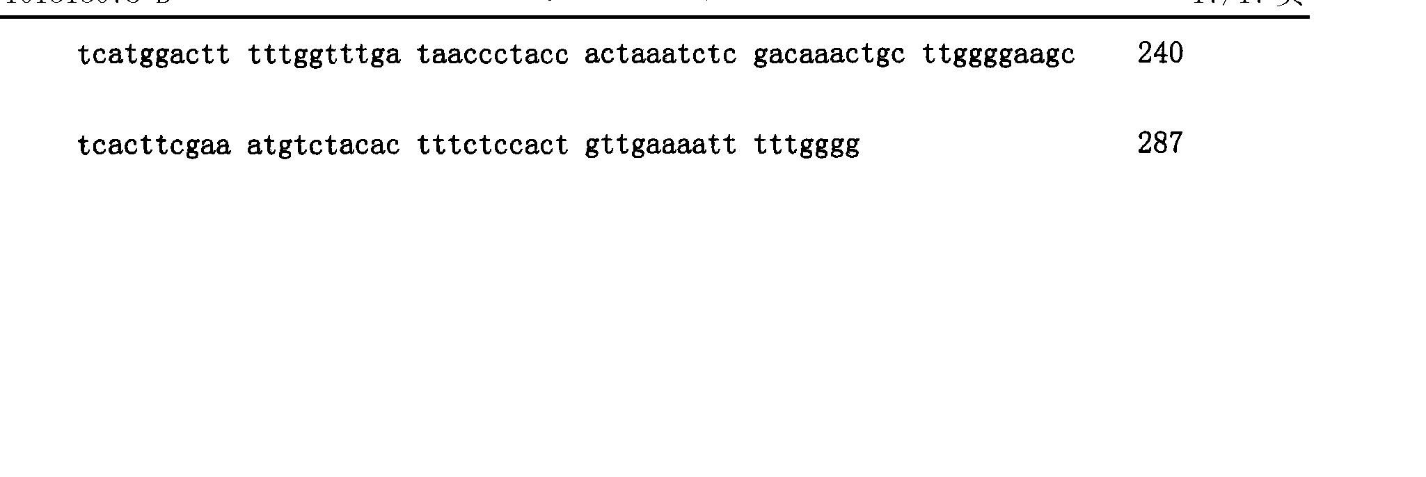 Figure CN101313078BD00381