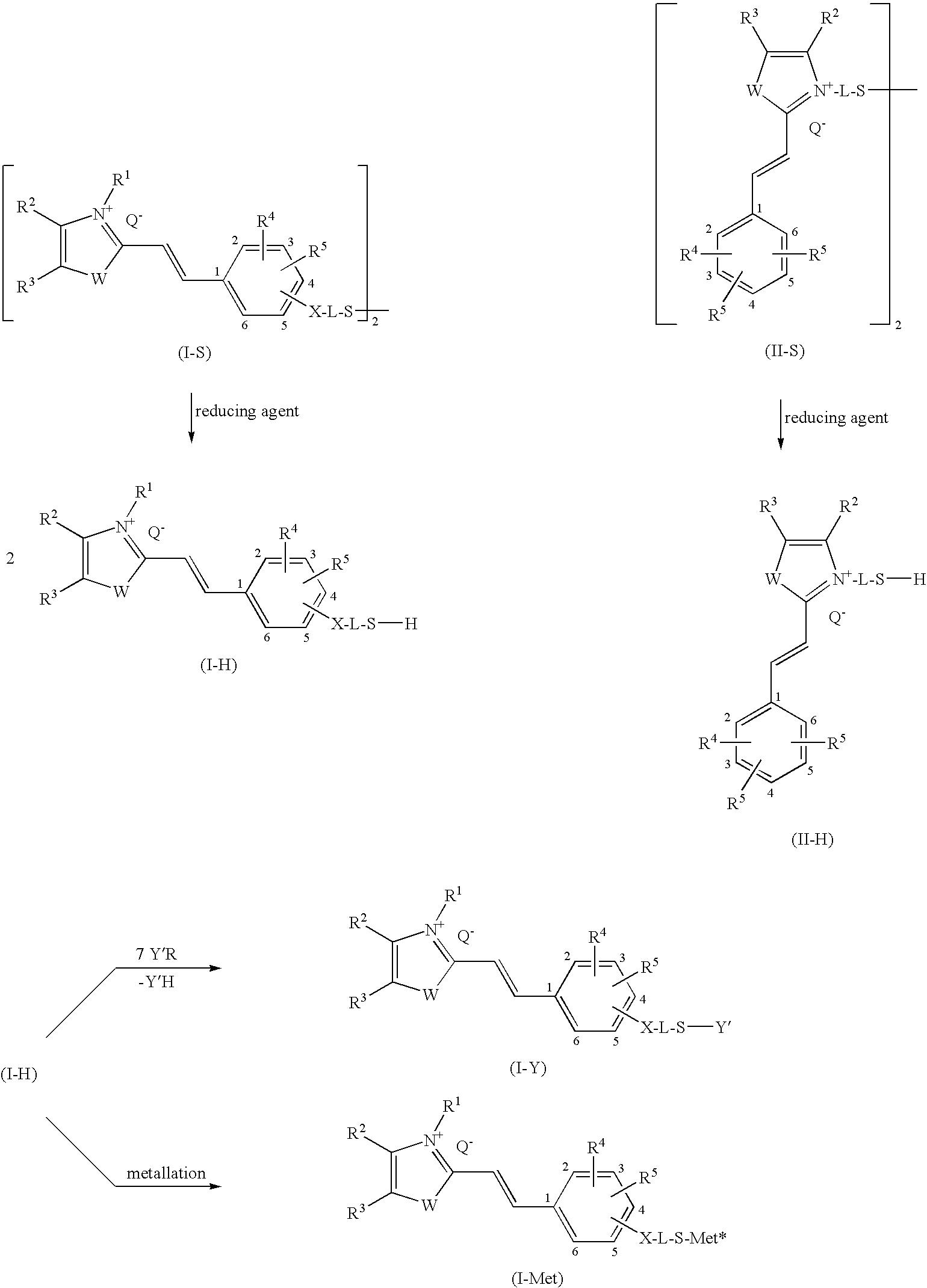 Figure US20090211038A1-20090827-C00017
