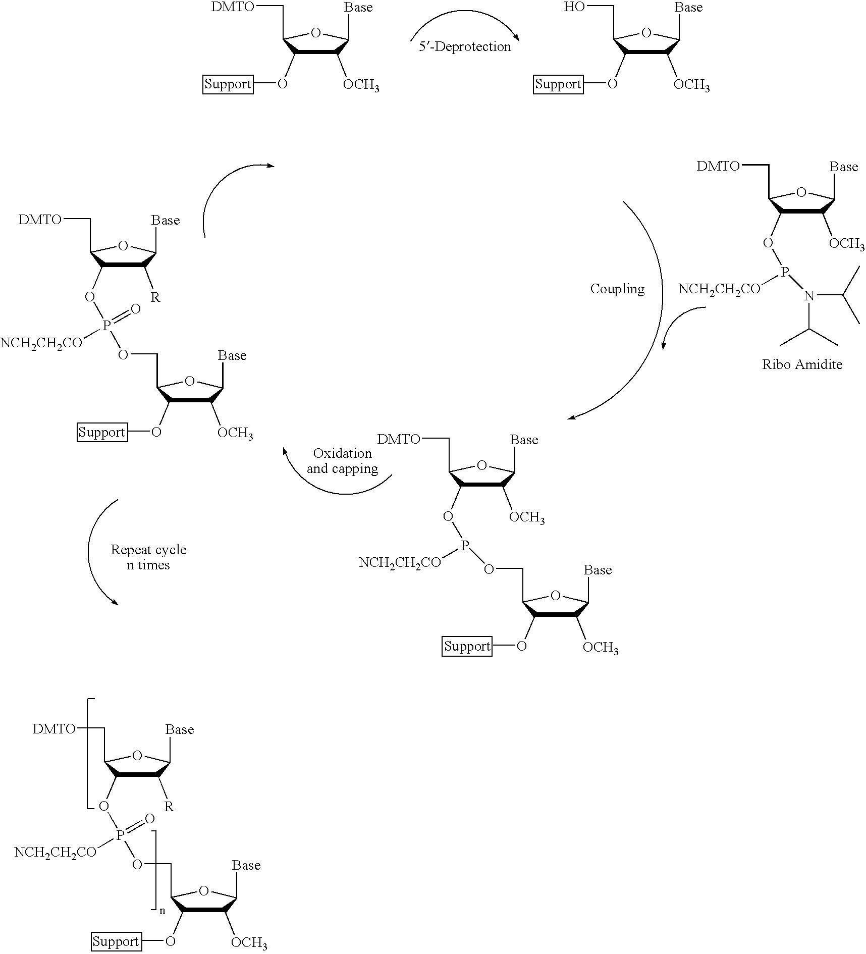Figure US20070105809A1-20070510-C00056