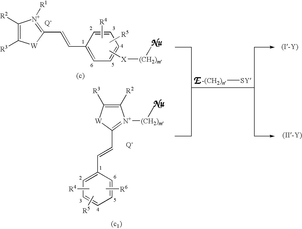 Figure US20090211038A1-20090827-C00023