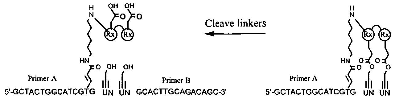 Figure imgf000321_0003