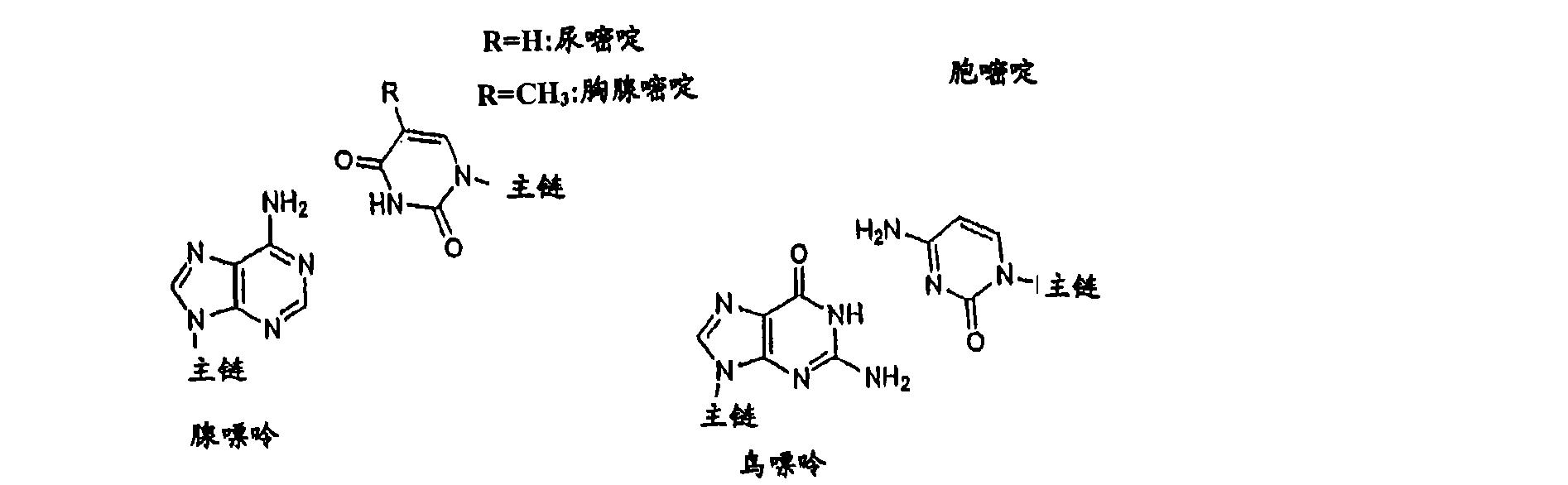 Figure CN101006177BD00211