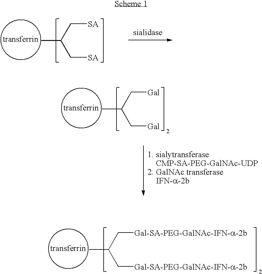 Figure US07338933-20080304-C00010