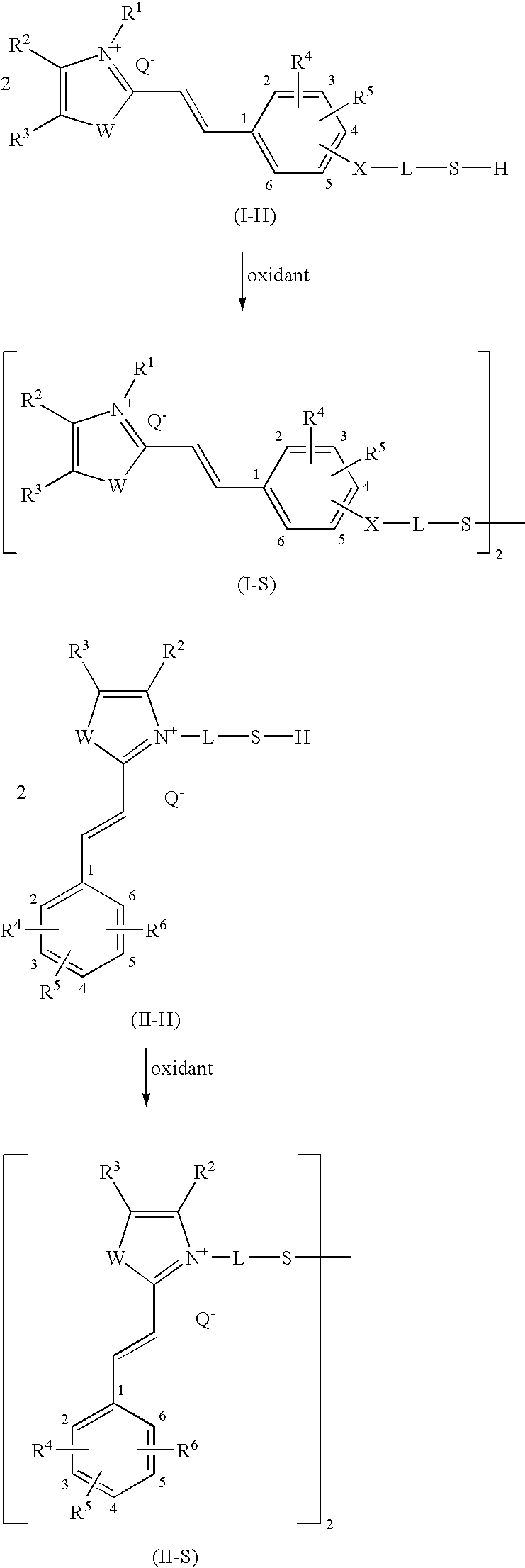 Figure US20090211038A1-20090827-C00027