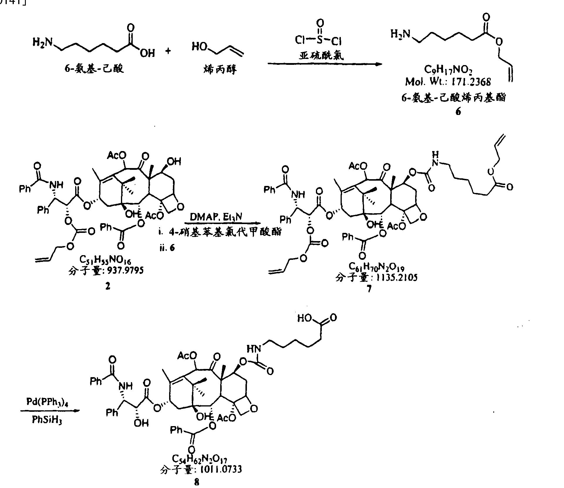 Figure CN101019024BD00171