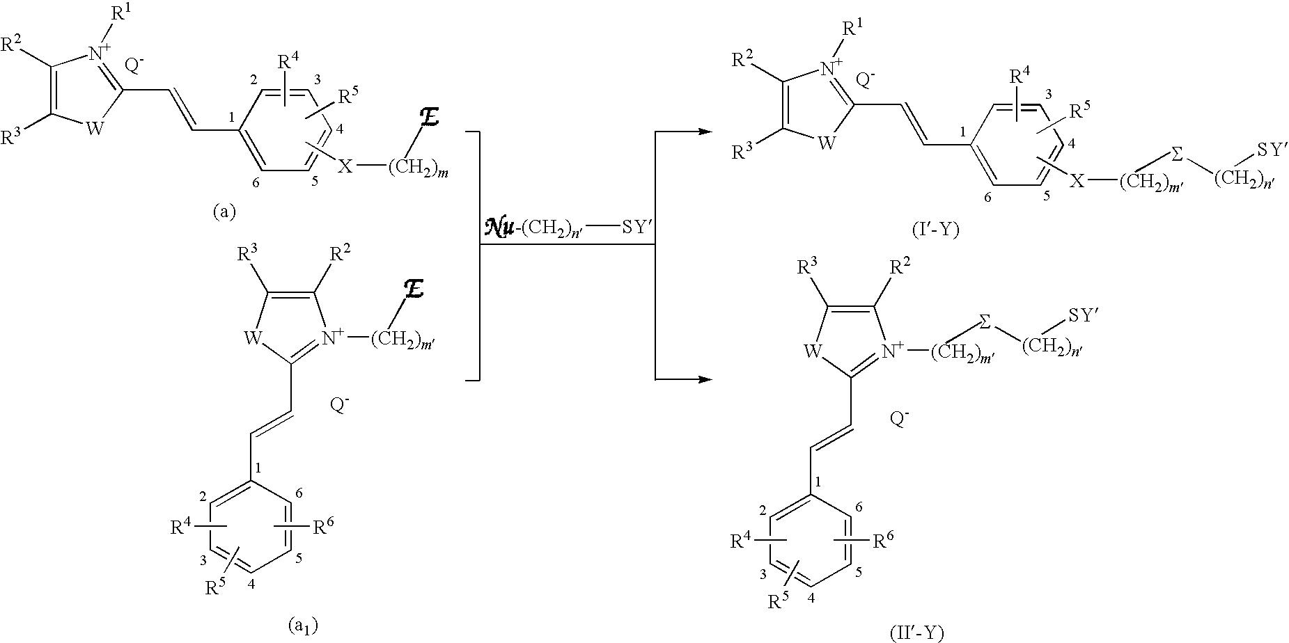Figure US20090211038A1-20090827-C00019