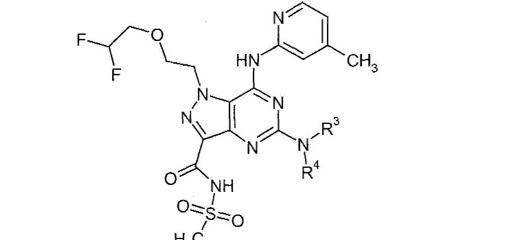 Figure CN101362765BD01902