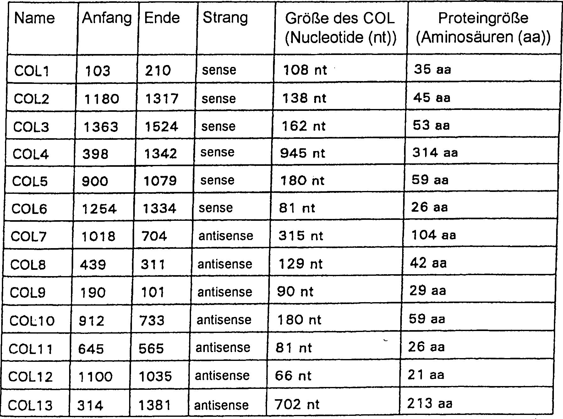 Die Determinanten des Gewichtsverlusts