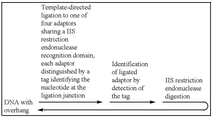 Figure US06258533-20010710-C00002