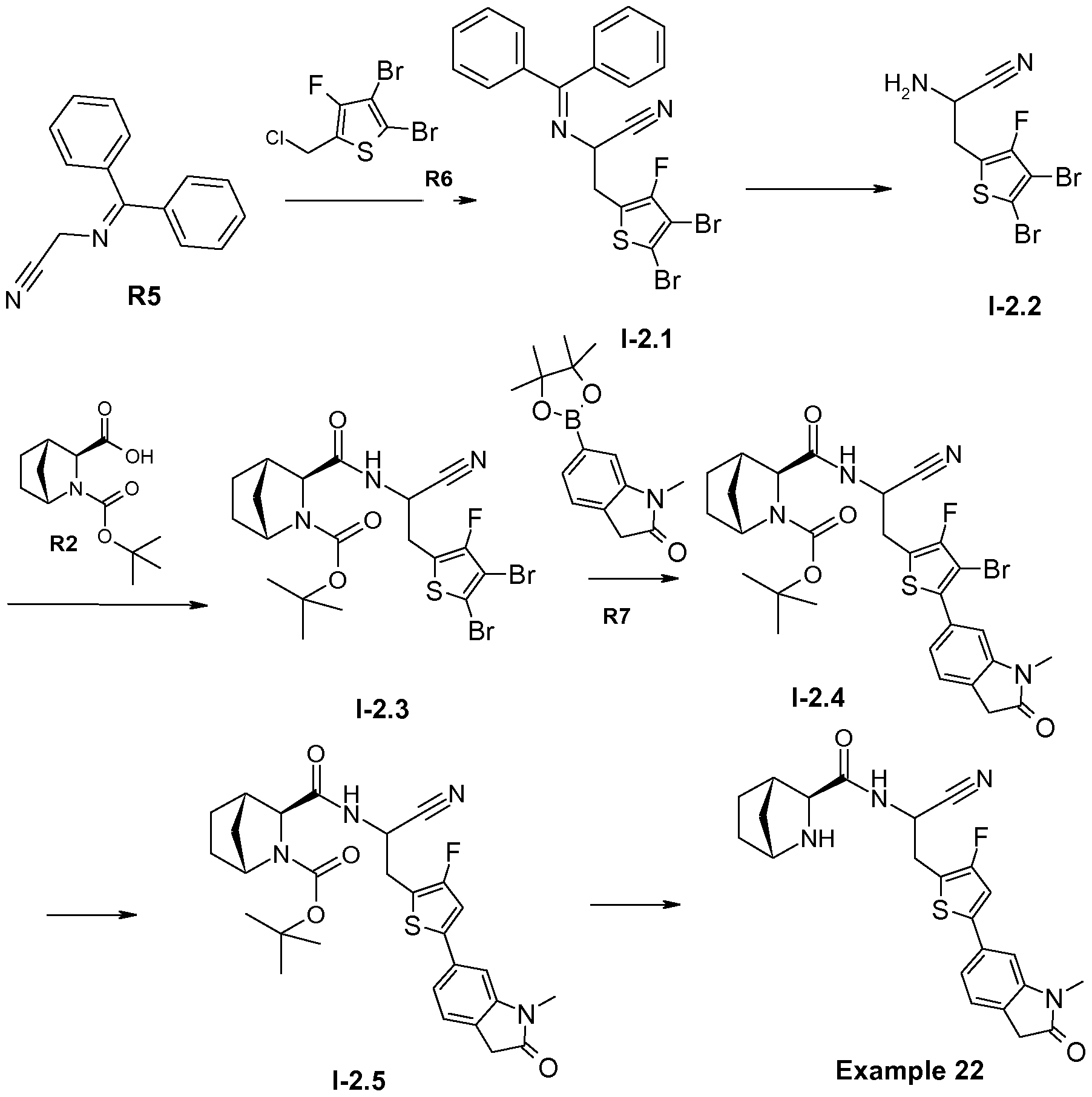 Synthesis of 7 7 dichlorobicyclo 4 1 0 heptane phase