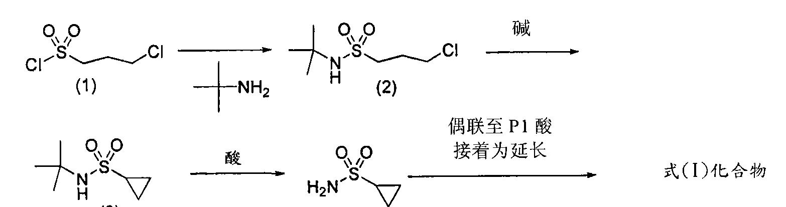 Figure CN101541784BD00311