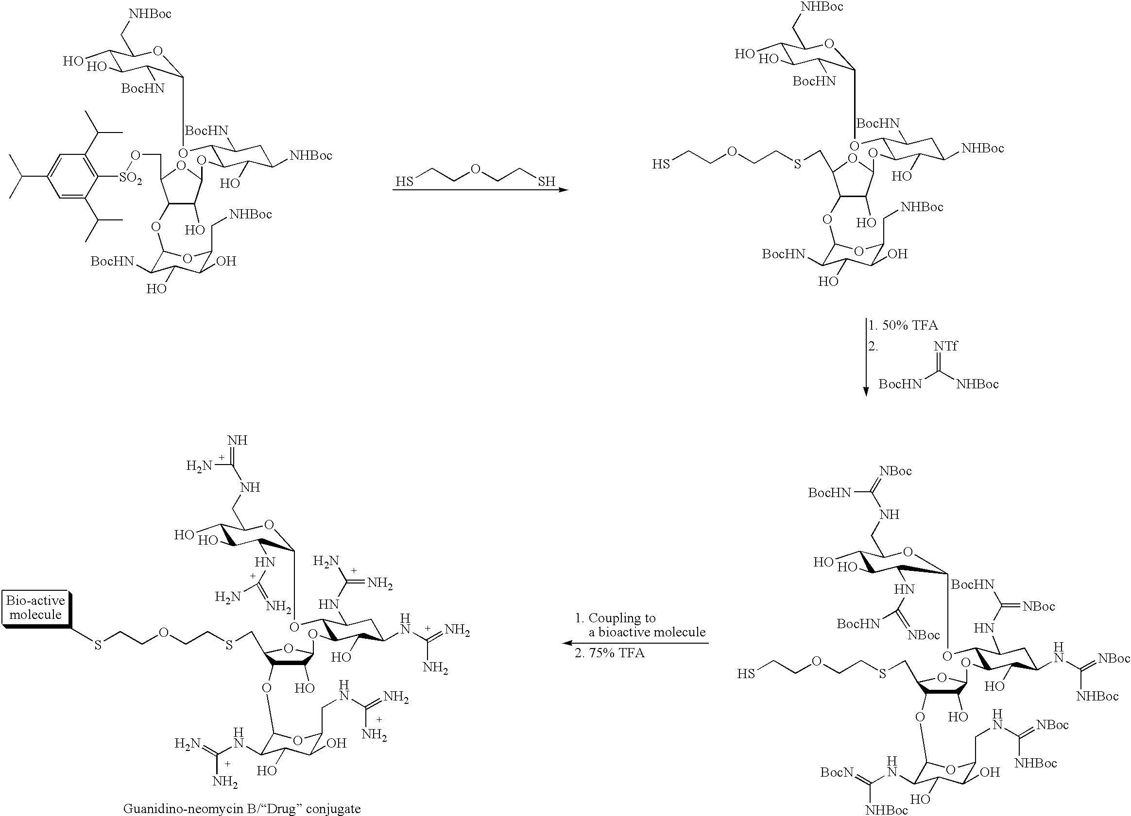 Figure US08071535-20111206-C00007